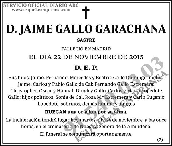 Jaime Gallo Garachana
